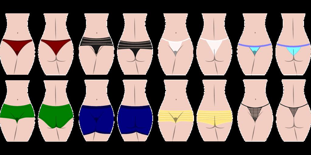 Lencería femenina. tipos de braga